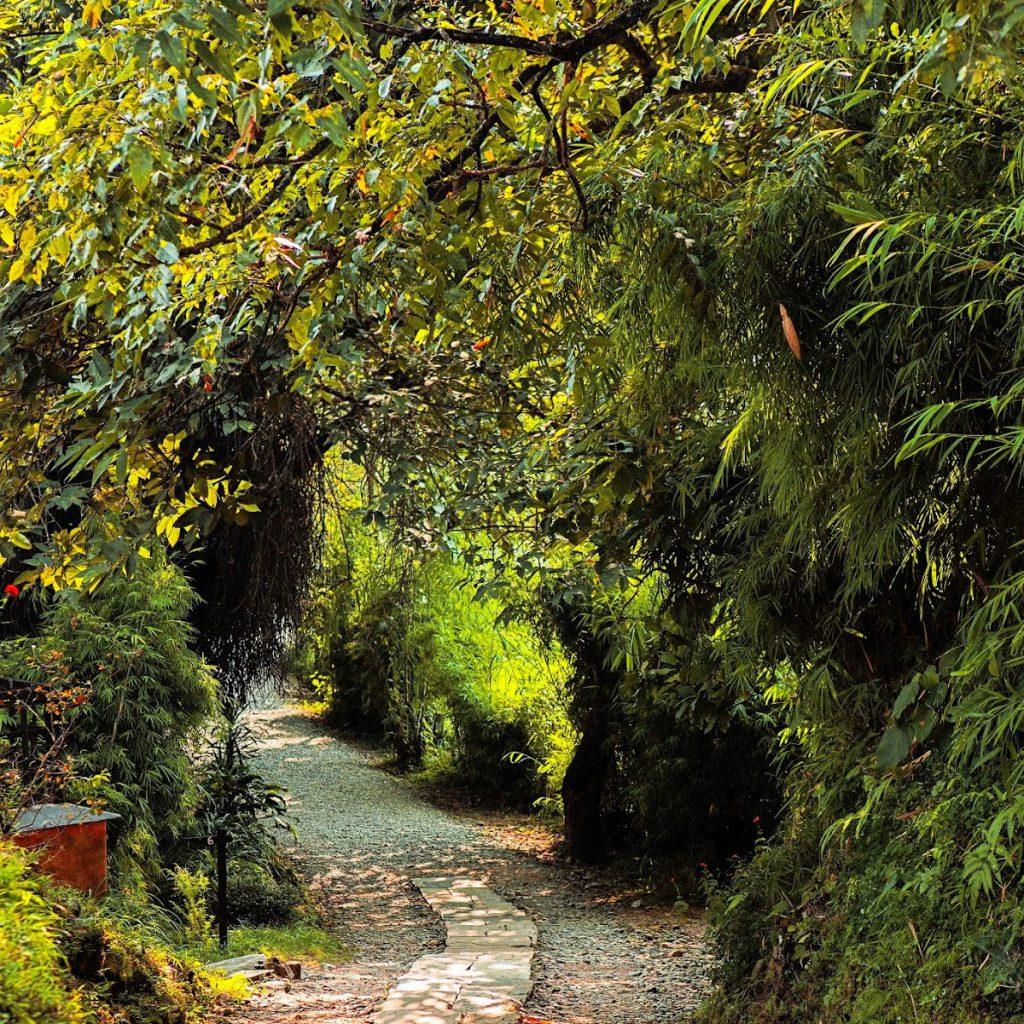 Best rural lodge in Pokhara